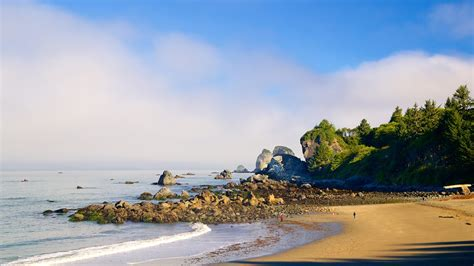 cheap california holidays west coast travel city direct eureka holidays book cheap holidays to eureka and eureka