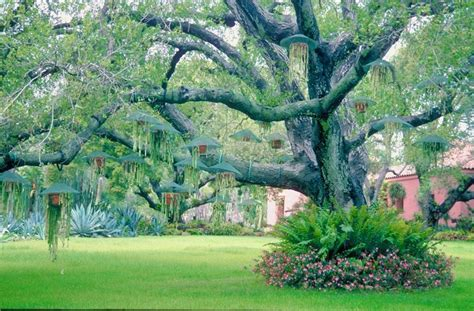 backyard landscape types families empty nesters and