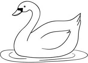 aneka gambar sketsa hewan terlengkap dp bbm dp bbm