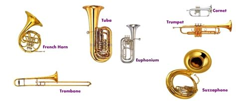 brass section instruments brass instrument family www pixshark com images