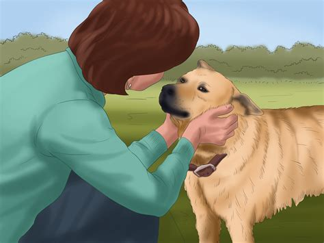how to communicate with dogs how to communicate with your with pictures wikihow