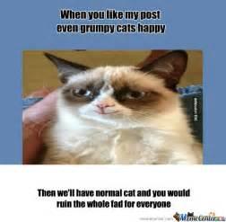 Grumpy Cat Meme Happy - rmx grumpy cats happy d by puggerugger meme center