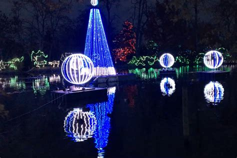 The National Geographic Photo Ark Cincinnati Parent Magazine Zoo Festival Of Lights Cincinnati