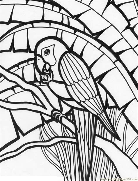 coloring pages of birds in the rainforest coloring pages of birds in the rainforest coloring pages