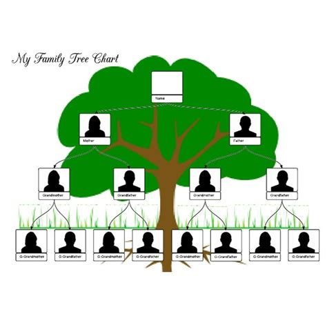 organizational tree template family tree organizational chart template pictures reference