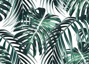 Black White And Green Kitchen - tropical leaves poster