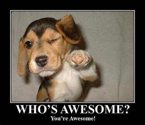 Your Awesome Meme - my goal 365 days of inspirational sayings and blessings