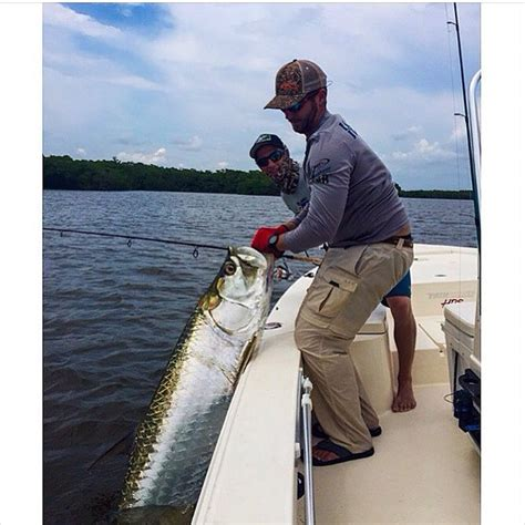 everglades boats merch nice tarpon out of t skiff life fishing boating