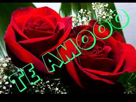 imagenes de rosas rojas para mi amor apexwallpaperscom rosas rojas industria del amor youtube