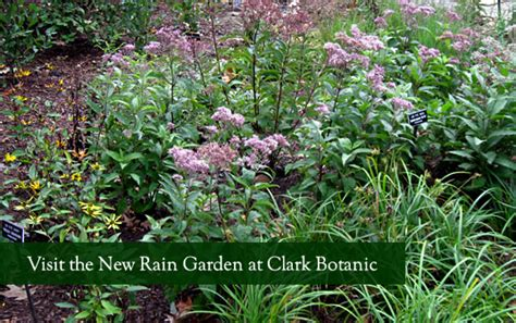 Clark Botanic Garden Clark Botanic Garden