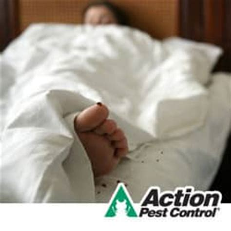 How To Avoid Bed Bugs by How To Prevent Bed Bugs In 2014