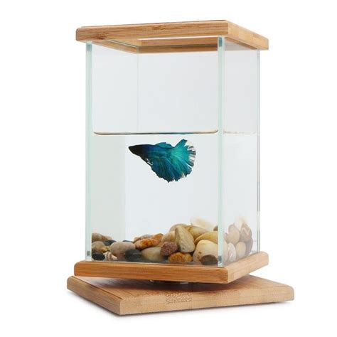 25 best ideas about fish bowl decorations on