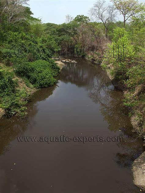 imagenes de guarico venezuela rio chirgua cojedes guarico