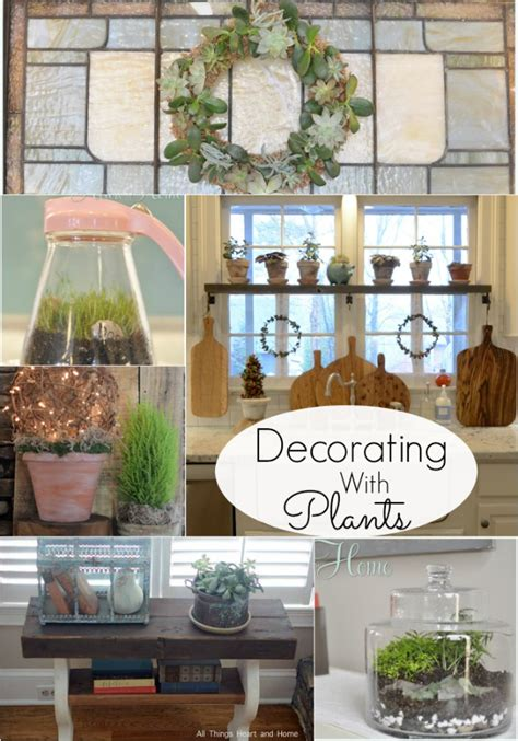 decorate home with plants diy plant decor all things heart and home