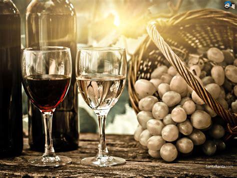 drinking wine wallpaper gallery