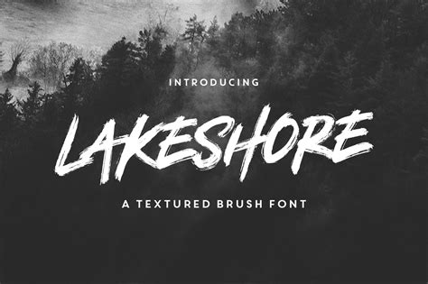 design font brush lakeshore brush font by rook design supply thehungryjpeg com