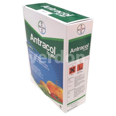 Antracol 1kg antracol 70 wp 1 kg magazin agro insecticide erbicide fungicide pistil