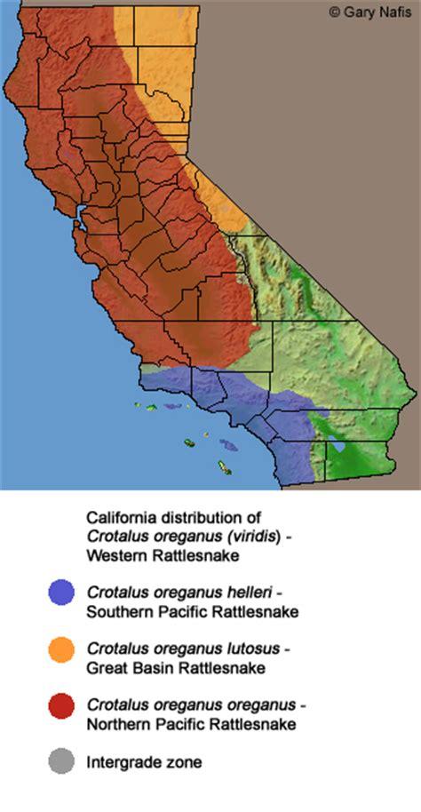 rattlesnakes in california map california rattlesnakes
