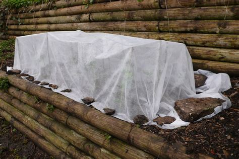 how to a for protection cold weather plant protection tips for protecting plants in winter