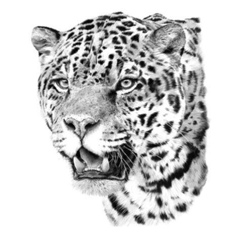 jaguar pattern tattoo 49 tattoo symbols that represent strength