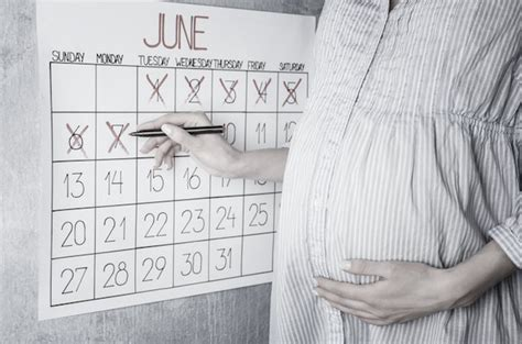 Calendar Calculator By Weeks Pregnancy Calculator Calendar Week By Week
