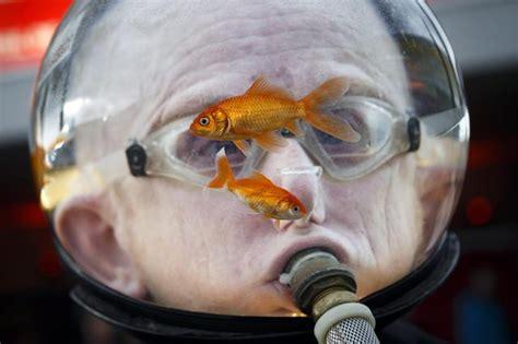 uomo pesci a letto un uomo indossa un acquario con due pesci
