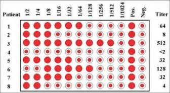 Plants Diseases List - hemagglutination