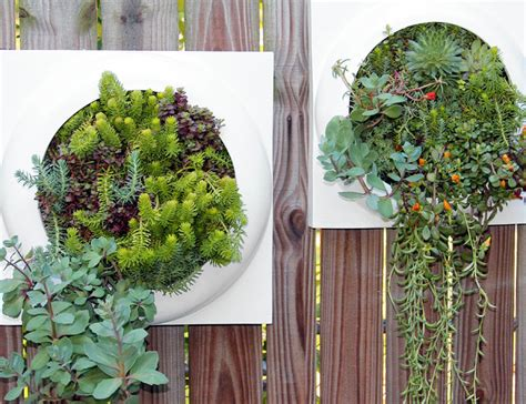 Indoor Living Wall Planter by Living Walls Mediterranean Indoor Pots And Planters