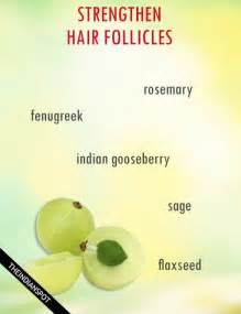 how to strengthen hair follicles in females 40 strengthen hair follicles naturally we strengthen hair