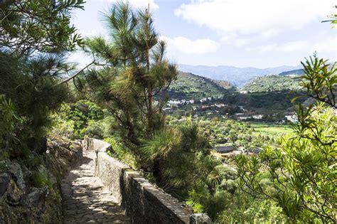 jardin botanico gran canaria botanischer garten auf gran canaria bei las palmas