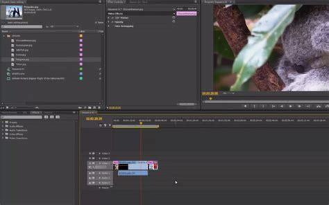 tutorial edit video dengan adobe premiere cs5 30 video tutorials for learning to use adobe premiere