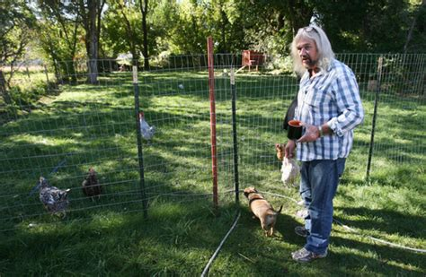 Backyard Chickens Ogden Utah Ogden Fighting City To Keep Backyard Chickens The