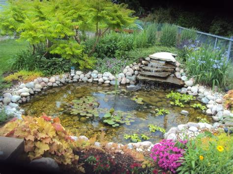 Garden Pond Ideas Pond Ideas Glenns Garden Gardening