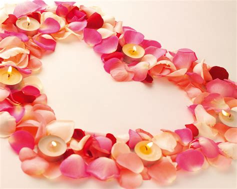 petals for valentines day the confetti st s day real petal