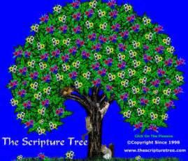 scripture tree scripture tree doug s catholic weblog