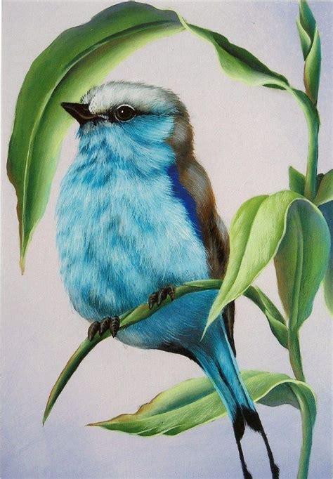 bird art drawing birds 1782212965 amazing colored pencil bird pinteres