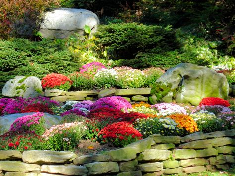 the garden of with the fall of mum s galore keep akron beautiful