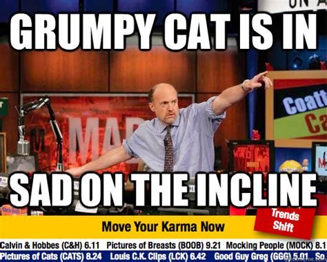 Jim Cramer Meme - grumpy cat is in sad on the incline mad karma with jim