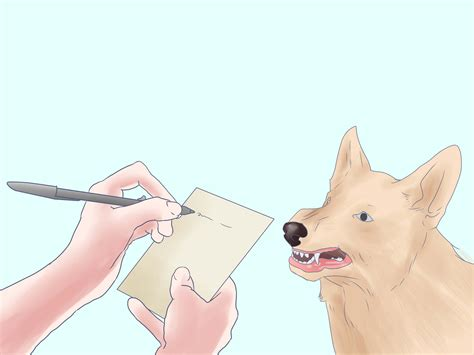 puppy temperament test how to temperament test a 15 steps with pictures wikihow