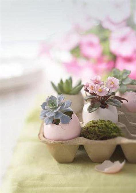 cute succulents creative indoor and outdoor succulent garden ideas 2017