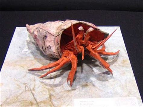 Hermit Crab Origami - nature in paper cool origami animal creations pix o plenty