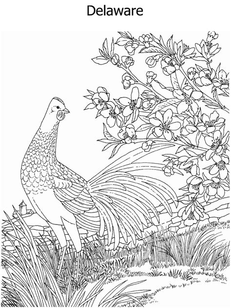 hawaiian birds coloring pages free coloring pages of hawaii state tree