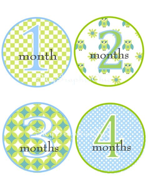 printable iron on monthly onesies 40 best images about transfers on pinterest big sisters