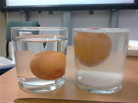 experimento infografia del huevo en agua salada quot stranger things quot 191 por qu 233 el huevo flota en agua salada
