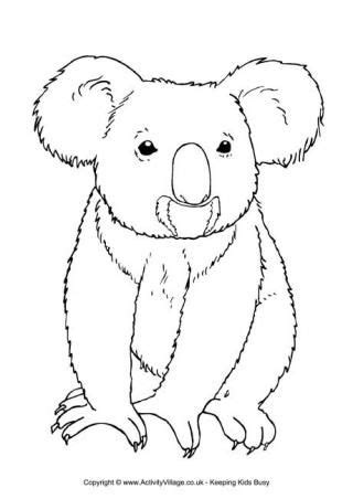 Koala Colouring Page 3 Aussie 12 Days Of Xmas Pinterest Australian Animals Koala Craft Koala Template