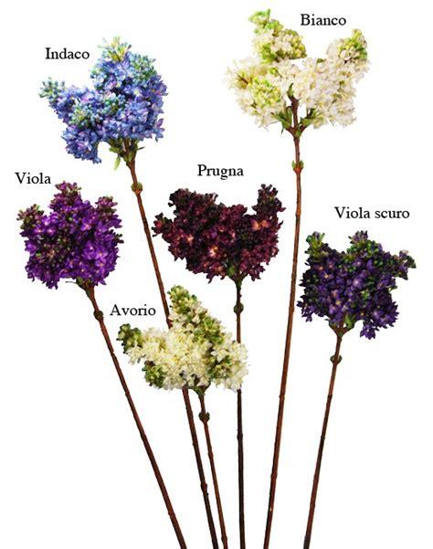 fiori di lilla fiori di lill 224 fiori e piante artificiali fiori