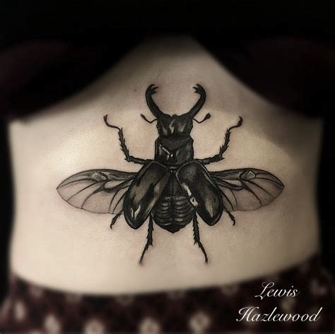beetle tattoo meaning 25 best ideas about beetle on scarab