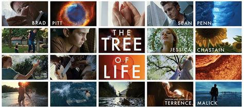 biography documentary films the tree of life 2011 le nouveau terrence malick est un