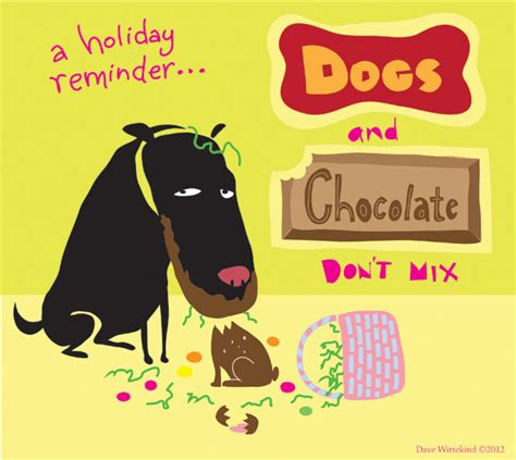 how bad is chocolate for dogs is chocolate really bad for dogs thin