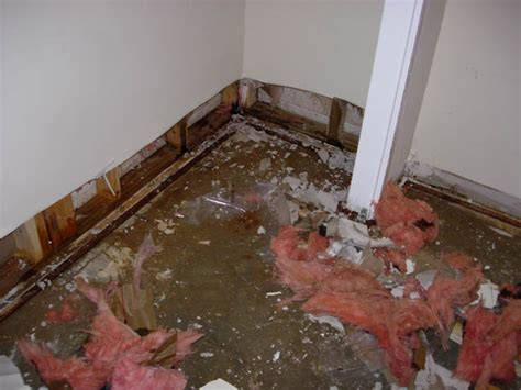 flooded basement archer restoration services
